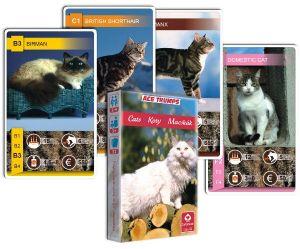 Kočky - Kvarteto  - karty   - Cartamundi
