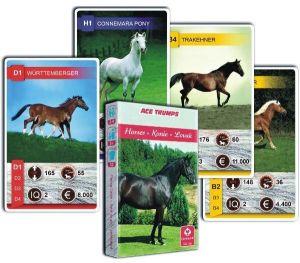 Koně  - koníčci  - Kvarteto  - karty   - Cartamundi