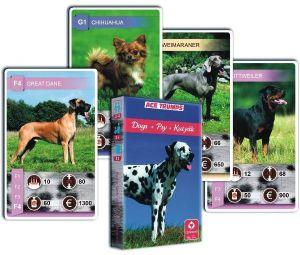 Psi - pejsci   - Kvarteto  - karty   - Cartamundi