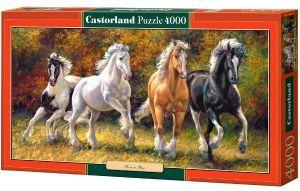Puzzle  Castorland  4000 dílků - Koně - zrození k běhu  - Castorland   400119