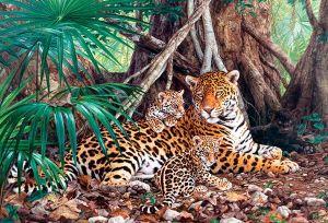 Castorland - Jaguáři v džungli - Puzzle 3000 dílků