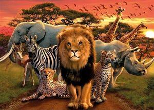 puzzle Ravensburger  500 dílků - Africká zvířata