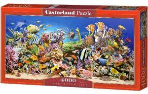 Puzzle 4000 dílků - Podmořský svět  -    Castorland