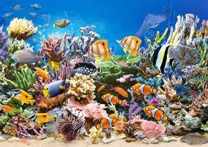 Puzzle Castorland 260 dílků - Barvy oceánu 27279