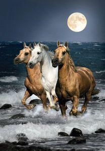 Puzzle Clementoni 1500 dílků - Koně v běhu 31676