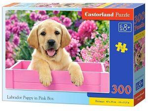 Puzzle Castorland 300 dílků - 030071 - Labrador v růžovém boxu