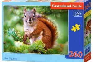 Puzzle Castorland 260 dílků - veverka 27422