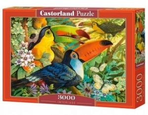 Puzzle Castorland 3000 dílků  - Tukani 300433