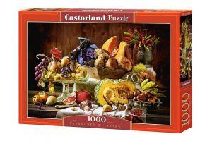 Puzzle Castorland  1000 dílků -  Ovoce   103546