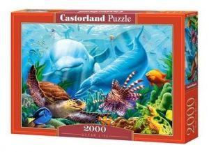 Puzzle Castorland 2000 dílků  :  Život v oceánu