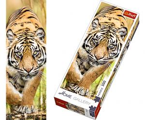 TREFL puzzle 300 dílků - Tygr na lovu  - 75002