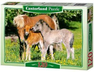 Puzzle Castorland 120 dílků - Koně 12909