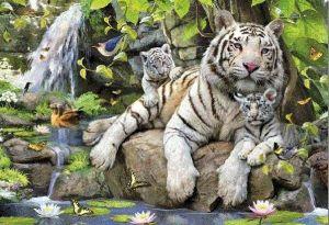 EDUCA Puzzle 1000 dílků Bílí bengálští tygři 14808