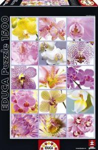 EDUCA Puzzle 1500 dílků  Orchideje - koláž   16302
