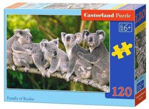 Puzzle Castorland 120 dílků - Koaly 13289