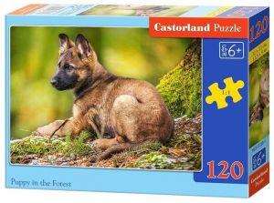 Puzzle Castorland 120 dílků - Štěně v lese  13258