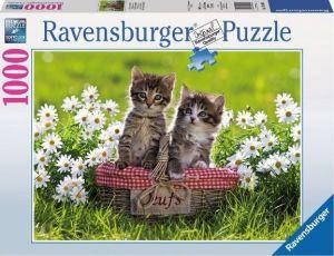 Puzzle Ravensburger 1000 dílků - Kočičí piknik  194803
