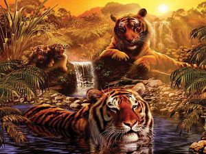 2000 dílků  Tygří koupel  -   puzzle Ravensburger