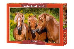 Puzzle Castorland  1000 dílků -  Koně   103959