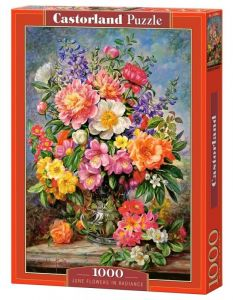 Puzzle Castorland  1000 dílků -  Rozjasněné květiny    103904