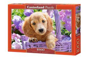 Puzzle Castorland  1000 dílků -  Štěně v košíku  103799