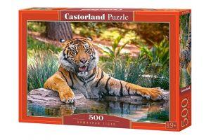 Puzzle Castorland 500 dílků -   Tygr sumatérský  52745