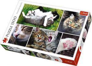 Puzzle Trefl 1500 dílků - Kočičí záležitost   26145