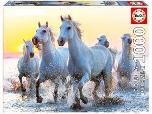 EDUCA Puzzle 1000 dílků - Bílé koně při západu slunce  17105