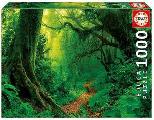 EDUCA Puzzle 1000 dílků - Začarovný les 17098