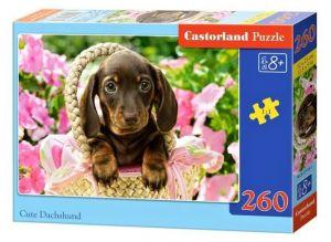 Puzzle Castorland 260 dílků - Roztomilý jezevčík   27514