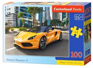 Puzzle Castorland 100 dílků premium  - Arrinera Hussarya 33  111015 a.jpg