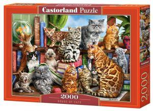 Puzzle Castorland 2000 dílků Kočky v domě   200726