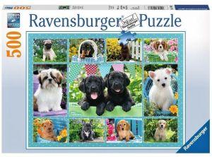 puzzle Ravensburger  500 dílků - Roztomilá štěňata  -  147083