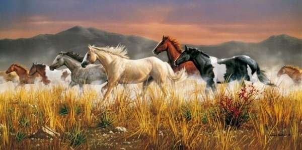 Puzzle Clementoni 13200 dílků - Divocí koně - 38006
