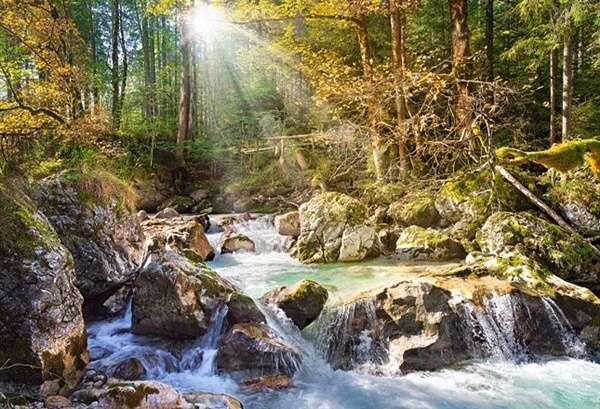 Castorland - Prosluněný lesní potok - Puzzle 2000 dílků art. 200382