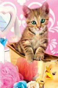 Puzzle mini 54 d - Trefl - Rozkošní mazlíčci - rezavá kočička 19634