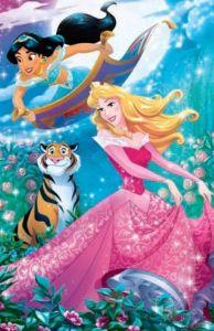 Puzzle mini 54 d - Trefl - Ve světě princezen - Růženka a  Jasmína 19647