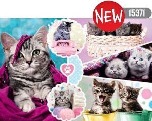 Puzzle   Trefl  160 dílků - Okouzlující koťátka  15371