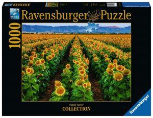 Puzzle Ravensburger 1000 dílků - Slunečnicové pole 152889