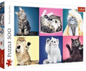 TREFL Puzzle  500 dílků -  Koťátka - koláž   37377