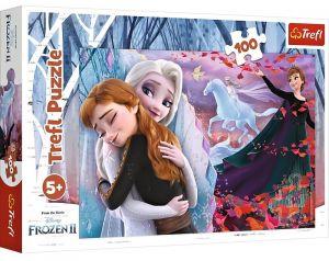 Puzzle Trefl 100 dílků - Frozen 16399