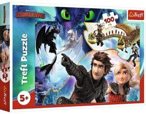 Puzzle Trefl 100 dílků - Jak vycvičit draka  16392