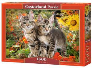 Castorland  Puzzle 1500 dílků  Kočičí kamarádi 151899
