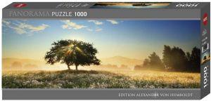 Heye - puzzle 1000 dílků panorama  VON Humboldt - Hra se světlem 29901