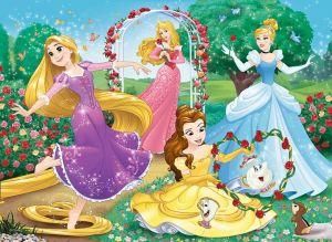 Trefl puzzle 30 dílků - Princezny 18267