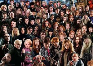 Puzzle Ravensburger 1000 dílků - Výzva - Harry Potter 149889