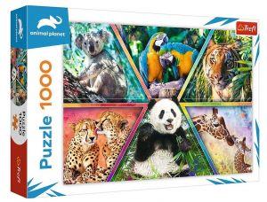 Puzzle Trefl  1000 dílků  - Království zvířat  10672