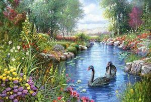 Castorland - Černé labutě - Orpinas  - Puzzle 1500 dílků